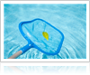 Grabbing a leaf stuck in pool with a net